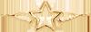 étoile avec des ailes 2 cm plaqué or