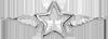 étoile avec des ailes 2 cm argent