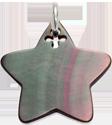 étoile en nacre foncée de 2 cm, argent